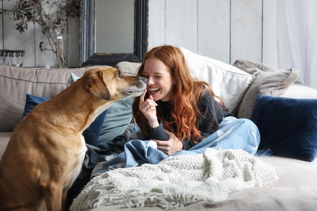 Dürfen Haustiere in der Wohnung verboten werden?